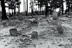 The Black Hope cemetary, several headstones in a field in front of a line of trees.
