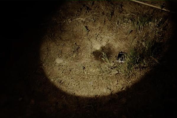 cell phone on ground in flashlight beam