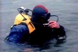 A scuba driver getting a breath of air above the water.