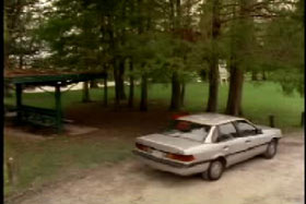 A gray sedan parked near some trees in a field.