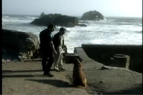 Two police officers stand by a bloodhound next to the ocean.