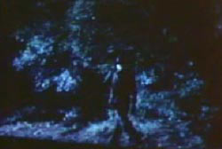 A mysterious figure walking out from the woods in the middle of the night