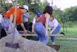 Search party using shovels to exhume the body of 'P'