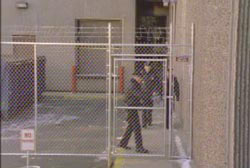 Prison guards behind the fence of a prison