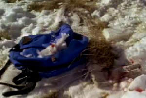 A blue back pack in a field with some blood stained snow