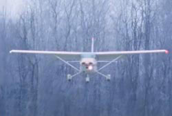 A small airplane flying down to the backdrop of a forest