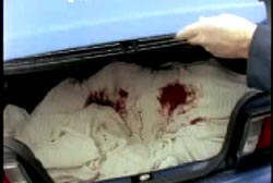 An investigator lifting the trunk of a car to reveal a body under blood stained white sheets