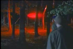 Airmen looking through trees at a glowing red light in the middle of the forest