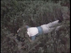 Tondevolds body, facedown in a patch of tall grass